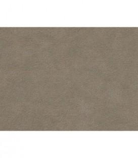 Alcantara Automotive Cover 1112 (2920) Pergament